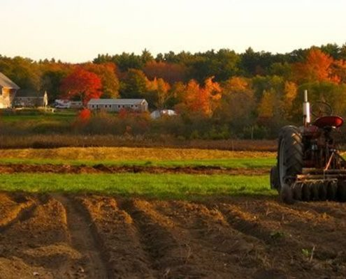 Mindful Agriculture